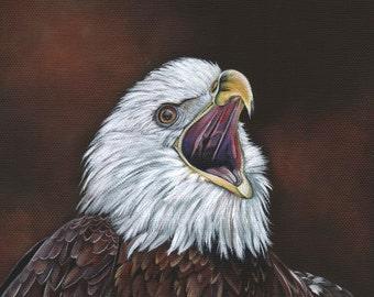 Bald Eagle painting- Print of acrylic painting 5 by 7 print wall art print - bird art print