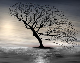 LARGE SURREAL TREE Fine Art on Canvas Photography Composite on Gallery Wrapped Canvas, Signed and Ready To Hang Colors of the Wind