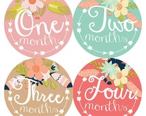 FREE GIFT, Monthly Baby Stickers Girl with Gerber Onesies®, Monthly Onesies® Girl, Baby Month Stickers, Tribal Arrows Feather Flowers