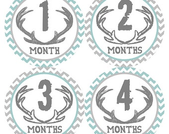 FREE GIFT, Woodland Nursery Decor Boy, Woodland Monthly Baby Stickers Boy, Woodland Baby Month Stickers Boy, Deer Antlers, Chevron Teal Gray