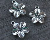 6 Antiqued Silver Flower Charms Plumeria 23mm