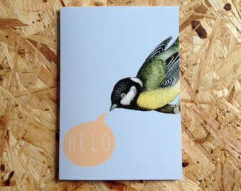 Helo Welsh Hello Blue Bird Orange Eco Friendly Art Greeting Card