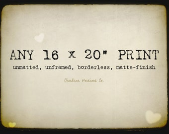 """Customize the size of your print and enlarge it to a 16 x 20""""!"""