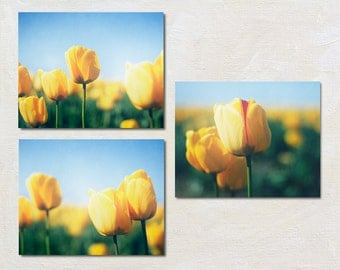 Tulip Picture Set, Three Photograph Set, Modern Flower Wall Art Set, Bright Blue, Green and Yellow Photography, Set of 3 Spring Art Prints