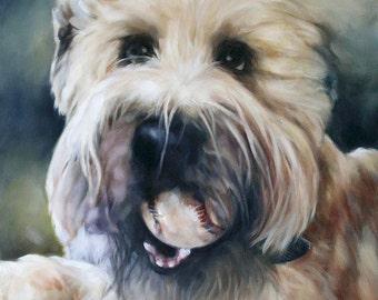 Custom Dog Portrait, CMQ Studio, Art, Oil Painting, Animal Painting, Pet Portrait, Portrait Commission, Animal Portrait, 11x14