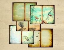 Printable Journal Page Set Download, Digital Journal Page Download, Scrapbook Backgrounds, Aged Paper Book, Nature Crafts, Printable, Bird