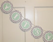 Sample Sale - ANTLERS Happy Birthday Party or Baby Shower Banner Mint Green Grey It's a Girl
