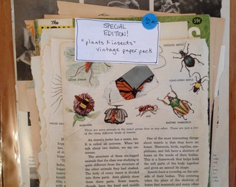 """Special Edition Paper Pack - """"plants and insects"""""""