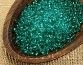 20g 11/0 seed beads Czech rocailles Teal Silver Lined NR 303 last Green seed beads last