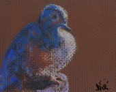 Small Bird Sketch Pastel Decorative Wildlife Perched Dove Art by Niki Hilsabeck