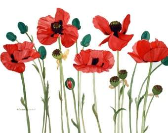 Red Poppy Field with Long Stems