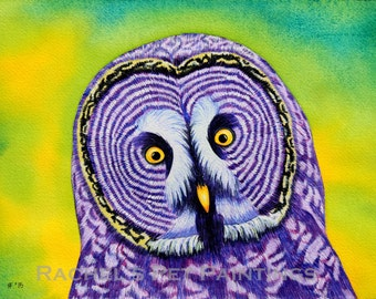 Great Grey Owl Painting Watercolor Bird Original Watercolor Painting Colorful Owl Bird Art Watercolor Bird Painting Wildlife Painting