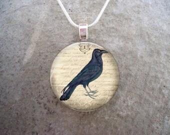 Crow Jewelry - Bird Jewellery - Glass Pendant Necklace - Raven 5