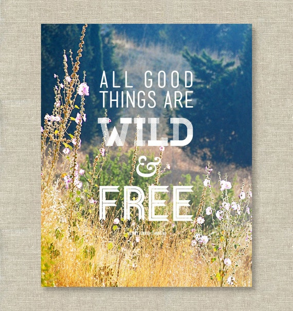 """all good things are wild and Henry david thoreau tells us that """"all good things are wild and free"""" these words are found in his lecture """"walking,"""" which he delivered numerous times."""