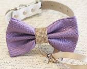 Lavender and burlap Dog Bow Tie, Dog ring bearer, Pet Wedding accessory, Burlap Wedding accessory, Lavender wedding idea