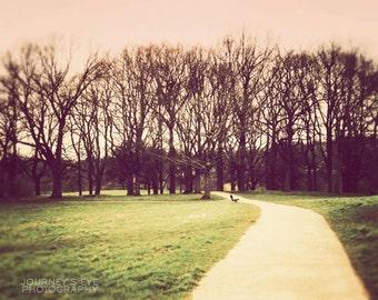 England photography, London photo, dreamy landscape photograph, pastel nursery art - Hampstead Heath