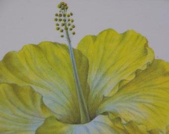 Aloha Hibiscus mat / pot stand / trivet / place mat / coaster / wall art / bright yellow Hibiscus flower