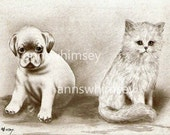 "Dog and Cat Art, Late 1800s RESTORED Antique Print, CONFUSION ....  ""Is This Another Dog?"" ""Is This Another Cat""  Affordable  Art  #24"