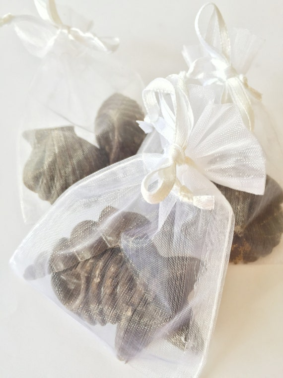Items Similar To Set Of 6 Beach Party Favors Chocolates Beach Wedding Favors Candy Wedding Favor