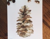 Pine Cone Watercolor Art Print