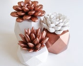 Copper Set of 3 Succulent Sculptures in Hexagonal, Tri-Level Containers, Tabletop, Desktop, Modern, Home and Office Decor