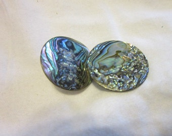 Vintage Ourtrageous  Real Abalone Disc Earrings  Crazy Wow