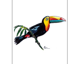 Catchii illustration, with originally hand-painted illustration of toucan