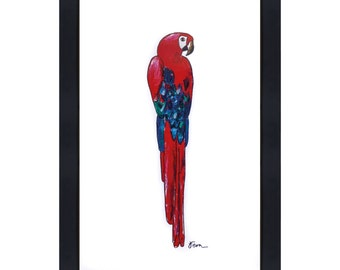 Catchii illustration including frame, with originally hand-painted illustration of parrot red