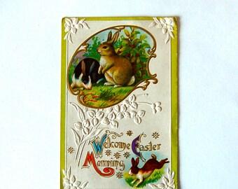 Vintage Wild Easter Bunny Postcard. Gold Detailing & Embossed