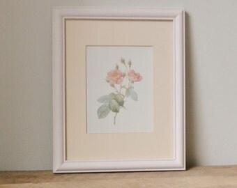 Framed Roses Print in Pastel Pink
