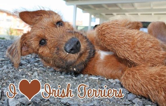 I love Irish Terriers Fridge Magnet 7cm by 4.5cm