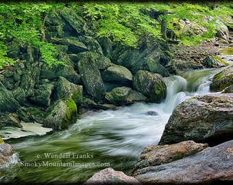 Little River Scenery E226