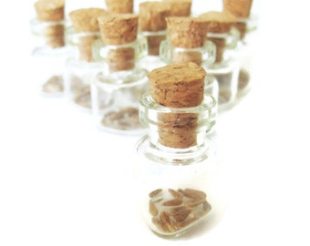 10 Eco Friendly Seed Favors - Wedding favor, Birthday, Bridal shower, Baby shower - Plant me favor - Aster powder puffs seeds favor