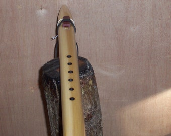 Low Em Native American Style Flute