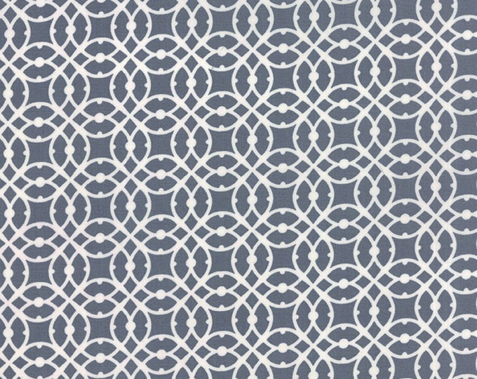Paradiso by Kate Spain - Destination Shade Gray - 1/2yd