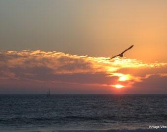 Ventura Beach Sunset Photography Instant Download, Nature Art