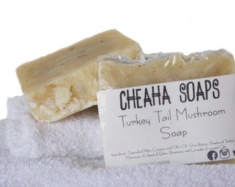 Turkey Tail Mushroom Soap - VEGAN