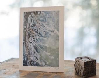 Frosted grass original signed nature photograph, fine art, textured matte, winter photograph, Northwest Territories