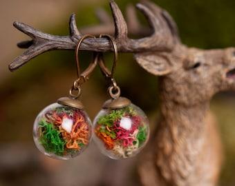 Real moss earrings, nature earrings, colorful moss earrings, antique brass earrings, glass vial earrings, glass earrings with moss