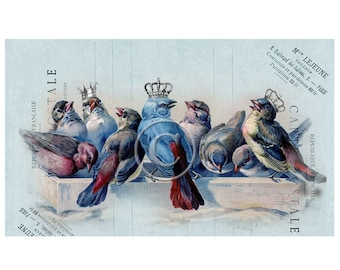 French Birds Printable Digital Download, ACEO, Digital Collage, Gift Tags, French Digital, Bird Digital, Transfer Images, Vintage Digital