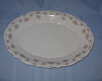 Large antique serving platter porcelain CT Carl Tielsch Altwasser Germany turkey holidays
