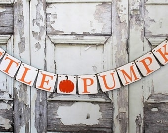 Fall Baby Shower Sign - PUMPKIN Decor BABY SHOWER Banner - Autumn rustic baby shower decorations