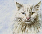Avigdor, the moody cat, original pet portrait painting, gouache and watercolor on w/c paper, 8x12 inches by Maga Fabler