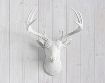 White Faux Mini Deer Head Wall Mount - Wall Charmers™ - Faux Deer Head Dear Head Decor Resin Animal Head Faux Taxidermy Faux Taxidermied