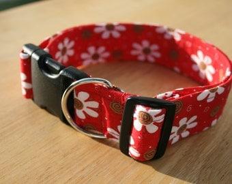 Dog collar, puppy collar, kitty collar