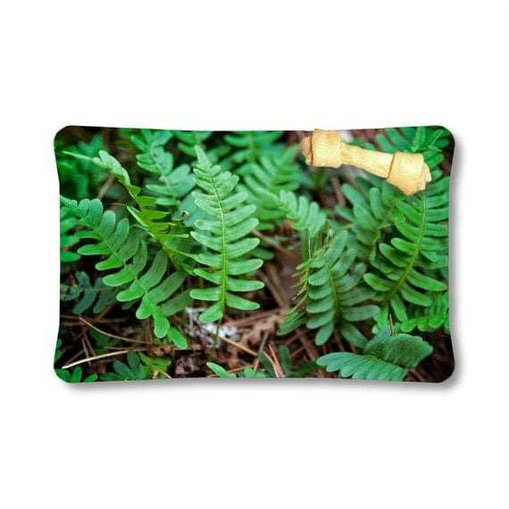 Pet Bed, Indoor Dog Bed, Waterproof Outdoor, Green and Brown, Pet Lovers, Fern Photography, Photo Gifts, Nature Image, Natural Photograph