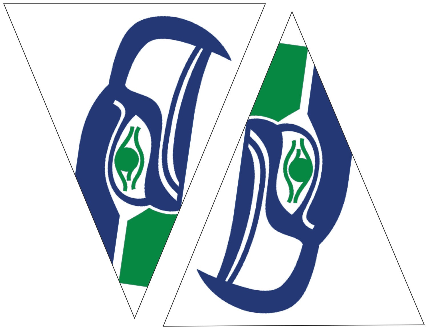 Seahawks printable flags with old school seahawks by ...