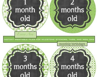 Baby's First Year; Chalkboard Photo Prop; Milestone Onesie Stickers; Monthly Birthday Stickers; Neutral Green Theme; INSTANT PRINTABLE FILES