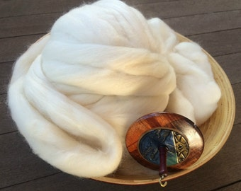 Organic Polwarth Silk Blend Roving Top Spinning Fiber 80/20 - 4 ounces