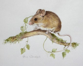 Mouse print by Anne McDougall. Edition limited to 45 prints